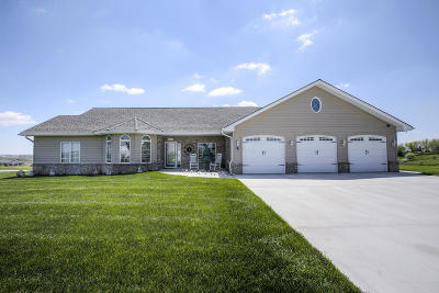 Single Family Home For Sale: 22305 Norman Drive