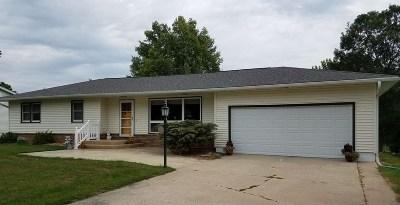 Single Family Home For Sale: 704 N Vine