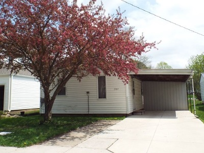 Strawberry Point IA Single Family Home For Sale: $45,000