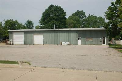 Oelwein IA Commercial For Sale: $155,000