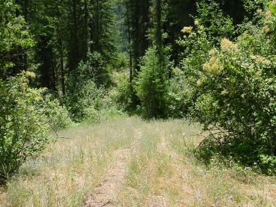 Calder ID Residential Lots & Land For Sale: $65,000