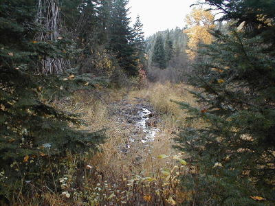 St. Maries ID Residential Lots & Land For Sale: $28,000