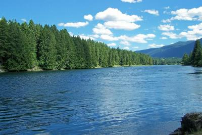 Clark Fork Residential Lots & Land For Sale: 59150 Hwy 200
