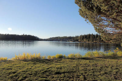 Priest River Residential Lots & Land For Sale: 41 Half Circle Dr