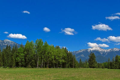 Clark Fork Residential Lots & Land For Sale: NNA Painter Road