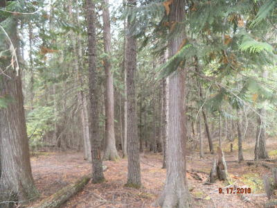 Residential Lots & Land For Sale: Middle Fork Santa Creek Road