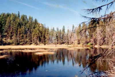 Clark Fork Residential Lots & Land For Sale: NNA Highdrive 137 Acres
