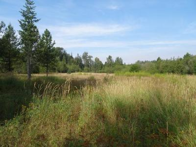 Priest River Residential Lots & Land For Sale: NNA Pleasant Plateau Ac Lot 10