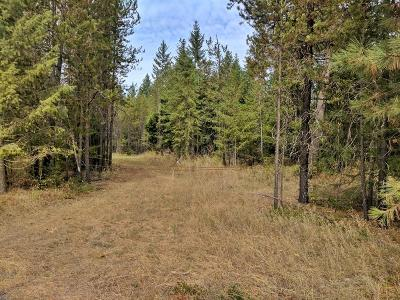 Rathdrum Residential Lots & Land For Sale: NKA N Wendler Loop