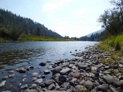 Bonners Ferry Residential Lots & Land For Sale: Nna Bussard Lake Rd