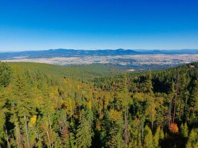 Post Falls Residential Lots & Land For Sale: NNA W Apple Blossom Road