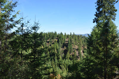 Bonners Ferry Residential Lots & Land For Sale: Lot 9 Sunrise Rd