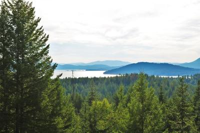 Sandpoint Residential Lots & Land For Sale: Blk 10 L 7 S Idaho Club Dr