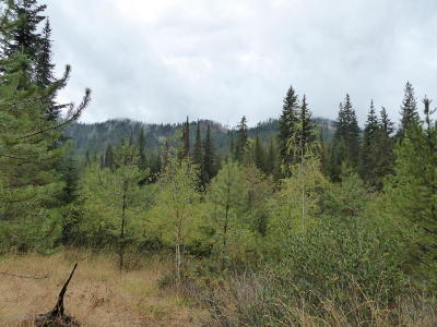 Priest Lake Residential Lots & Land For Sale: Linda Ln