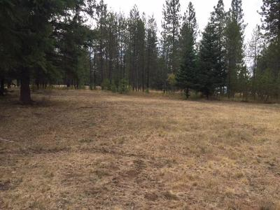 Rathdrum Residential Lots & Land For Sale: 25576 N Vista View Ct.
