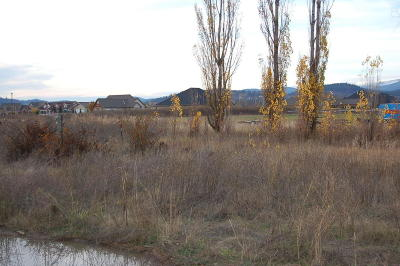 Post Falls Residential Lots & Land For Sale: 817 W Staples Rd