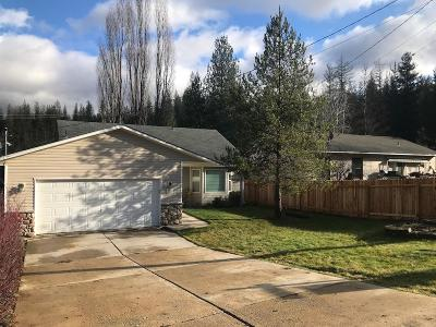Single Family Home For Sale: 511 Lower Page Road