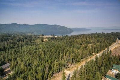 Priest Lake Residential Lots & Land For Sale: 5043 Dickensheet Rd