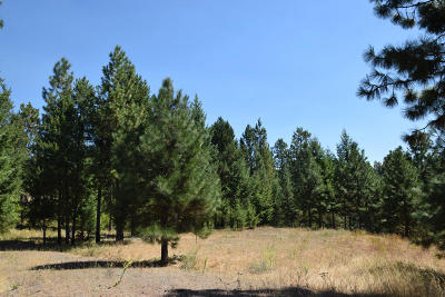 Bonners Ferry Residential Lots & Land For Sale: Lot 11 Chokecherry Dr