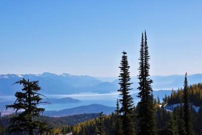 Sandpoint Residential Lots & Land For Sale: NNA Tall Timber B1l6