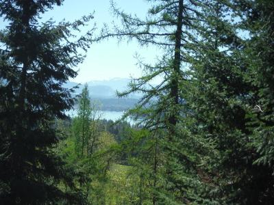 Sandpoint Residential Lots & Land For Sale: Syringa