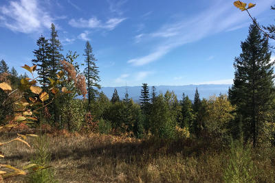 Sandpoint Residential Lots & Land For Sale: NNA Hidden Spring Rd