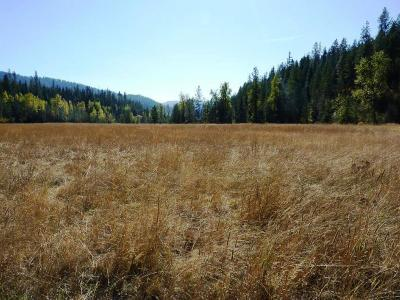 Coeur D'alene Residential Lots & Land For Sale: 4 S Stella Creek Rd