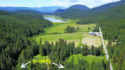 Bonners Ferry Residential Lots & Land For Sale: NNA Perkins Lake (Tract 1)