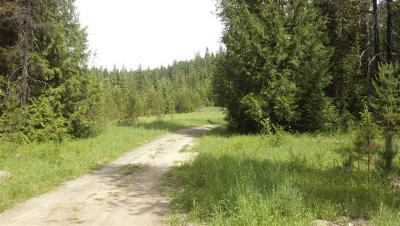 Priest River Residential Lots & Land For Sale: 3885 Gleason McAbee Falls Rd