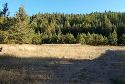 Priest River Residential Lots & Land For Sale: 8 Breezy Way