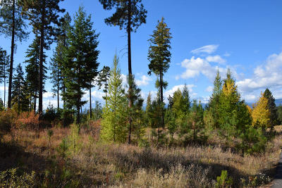 Bonners Ferry Residential Lots & Land For Sale: Lot 4 Pintail Dr