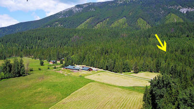 Bonners Ferry Residential Lots & Land For Sale: NNA Perkins Lake (Tract 4)