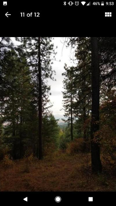 Rathdrum Residential Lots & Land For Sale: L6 Youngs Crystal Springs Estates