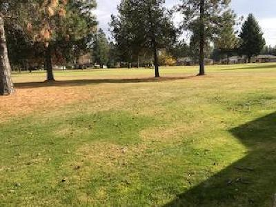 Rathdrum Residential Lots & Land For Sale: Twin Lakes