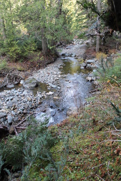 Sandpoint Residential Lots & Land For Sale: NKA Grouse Creek (40 Acres)
