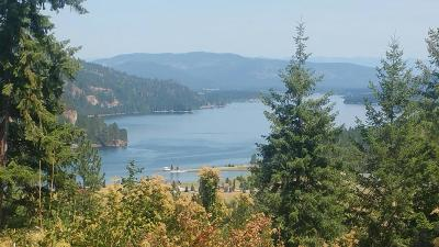 Priest Lake, Priest River Single Family Home For Sale: Morning Star Mountain