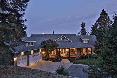 Coeur D'alene Single Family Home For Sale: 1570 S Reynolds Rd
