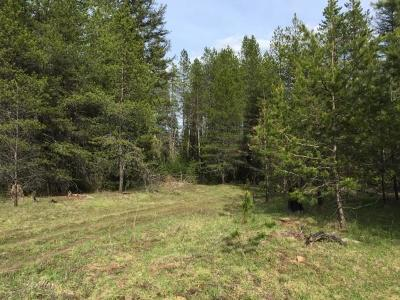 Priest River Residential Lots & Land For Sale: NNA Mud Gulch Rd.