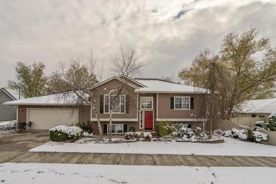 Hayden Single Family Home For Sale: 1386 W Starling Ave