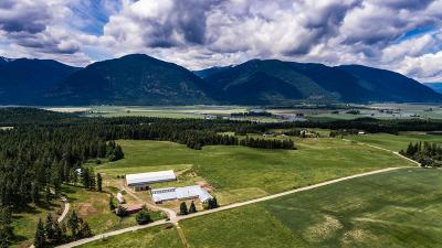 Bonners Ferry Residential Lots & Land For Sale: 1324 Turner Hill Rd