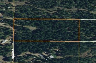 Rathdrum Residential Lots & Land For Sale: 24606 N Nikoma Rd