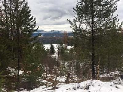 Sandpoint Residential Lots & Land For Sale: NNA Clearwood Ln