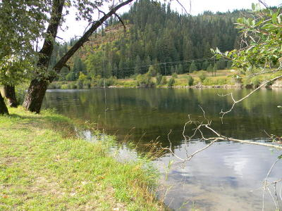 Benewah County Residential Lots & Land For Sale: NKA Lot 25 Riverside Tracts
