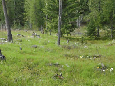 Bonners Ferry Residential Lots & Land For Sale: Nna Santa Fe Lane 67 Acres