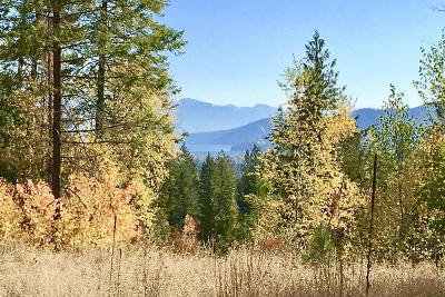 Sandpoint Residential Lots & Land For Sale: 25 Mariposa Ct