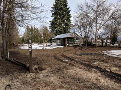 Hayden Residential Lots & Land For Sale: 209 E Dakota Ave