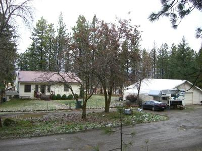 Post Falls Single Family Home For Sale: 955 N Neufeld Ln
