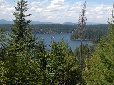 Hayden Residential Lots & Land For Sale: NNA Hayden Lake Rd