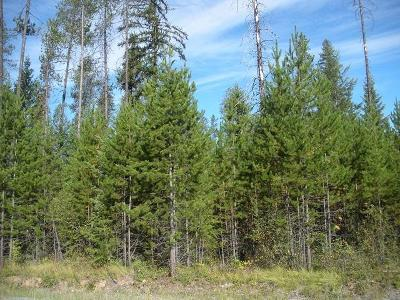 Priest Lake Residential Lots & Land For Sale: NNA Ryan Lot 15 Road