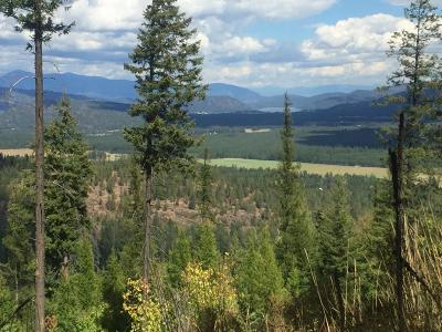Priest River Residential Lots & Land For Sale: NNA Curtis Creek Rd